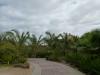 Riu Garopa - Sal (Kap Verde)