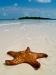 Playa Sirena auf Kuba